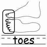 Toes Clipart Clip Elbow Coloring Parts Cliparts Words Basic Face Labeled Toe Cartoon Human Panda Clipartpanda Neck Abcteach Library Presentations sketch template
