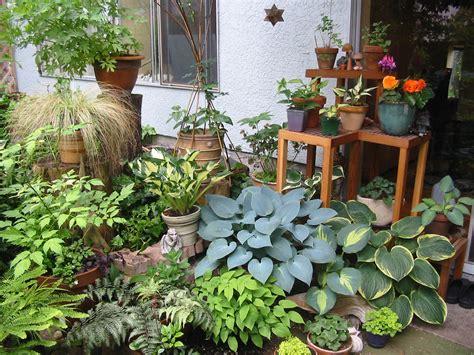 The Joys Of Patio Gardening