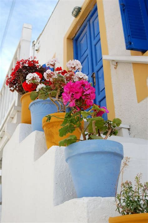 wonderful outdoor steps decorated  flower planters