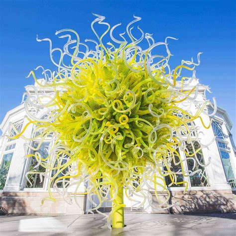 botanical garden nyc where to see the out of this world glass of dale