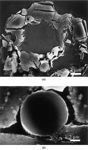 Chemical Behaviour Of A P55 Carbon  U00aelament In Two Dierent