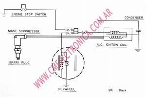 Honda Qa50 Shop Wiring Diagram