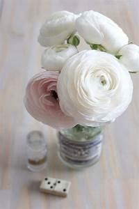 Bouquet Fleurs Blanches : fleurs hautes blanches ~ Premium-room.com Idées de Décoration