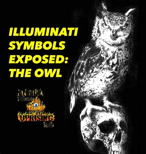 illuminati owl symbol 17 best ideas about illuminati owl on owl