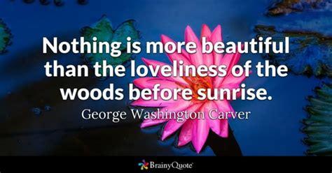 sunrise quotes brainyquote