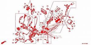 Wire Harness  Battery For Honda X Adv 750 2017   Honda Motorcycles  U0026 Atvs Genuine Spare Parts Catalog