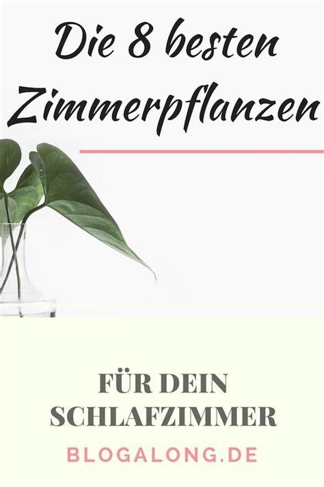 kokoserde für welche pflanzen die 8 besten zimmerpflanzen f 195 188 r dein schlafzimmer gerda schlafzimmer pflanzen
