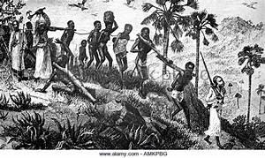 Slave Trade Stock Photos & Slave Trade Stock Images - Alamy
