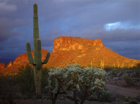 mesa az arizona red mountains beautiful arizona pinterest