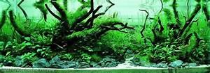 Co2 Aquarium Berechnen : aquarium co2 systems regulators and diffusers co2 ~ Themetempest.com Abrechnung
