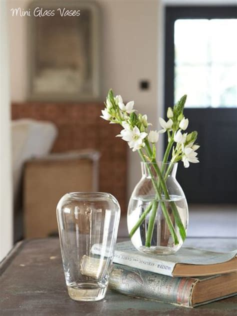 Flowers In Small Vases by Six Small Vases From Nordic House For Simple
