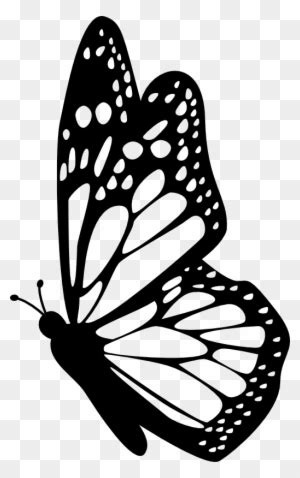 clipart illustration butterfly silhouette pencil