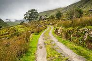 Beautiful Spring Landscapes Ireland