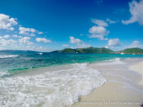 Cruising Bvi Sandy Spit Where The Coconuts Grow