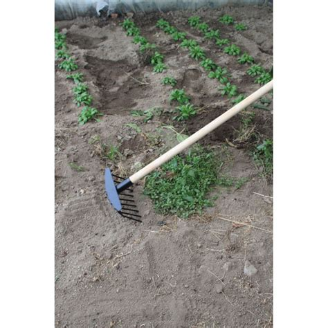 rateau pour arracher et enlever les mauvaises herbes jardin et saisons