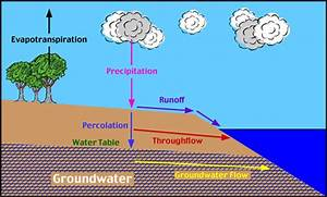 Water Cycle Group 3