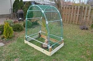 Mini Serre Jardin : mini serres de jardin mini serre de jardin objets du mois ~ Premium-room.com Idées de Décoration