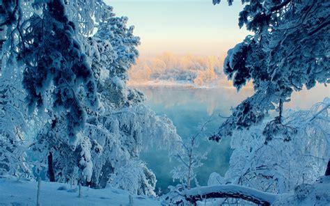 วอลเปเปอร์ : แนวนอน, ป่า, ธรรมชาติ, หิมะ, ฤดูหนาว, ถิ่น ...