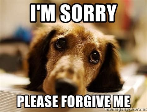 Forgive Me Meme - i m sorry please forgive me sad doggie meme generator
