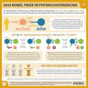 The 2018 Nobel Prize in Physiology/Medicine: Unleashing ...