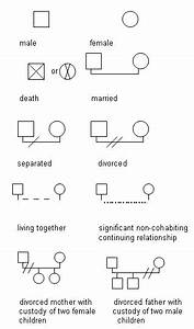 Family Structure Diagrams
