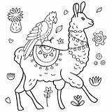Coloring Llamas Lama Adults Printable Coloration Perroquet Papegoja Och Illustrationer Mandala Loading Vecteur Alpaca Jugofmilk sketch template