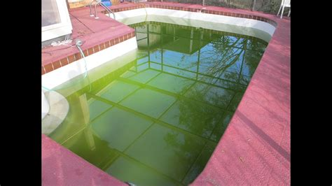How To Clear Up Green Swimming Pool Water Pt.-youtube