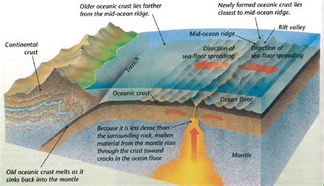 where does seafloor spreading take place sea floor spreading from continental drift to the theory