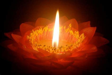 idees deco chambre adulte une bougie fleur source d 39 inspiration et touche d