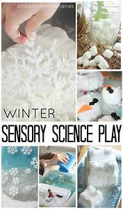 November Calendar Picture Ideas Growing Crystal Evergreens Science And Winter Themed
