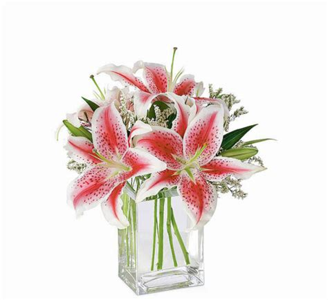 Maybe you would like to learn more about one of these? FTD® Pink Lily Bouquet #SY3FA · FTD® Sympathy Flowers ...