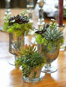 How To Display Succulents: 30 Cute Examples - DigsDigs
