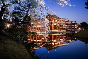 Perfect Cherry Blossom Spots In Kyoto For A Romantic