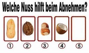 Nüsse Welche Nüsse : gesund abnehmen mit n ssen aber welche sind gesund ~ Cokemachineaccidents.com Haus und Dekorationen