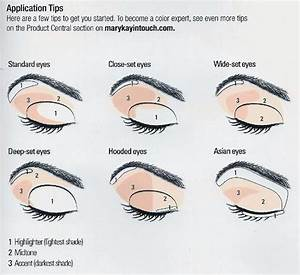 Internal organs number gallery how to guide and refrence eye diagram for makeup application gallery how to guide and refrence ccuart