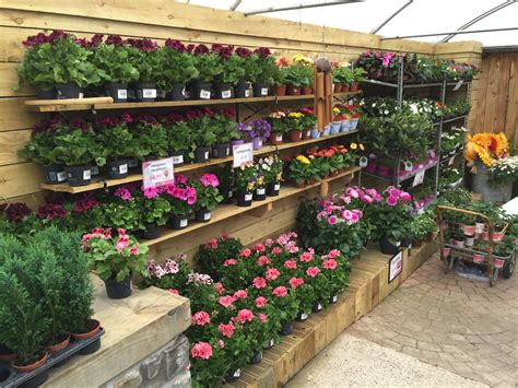 best 28 bridgend garden centre gift shop at ewenny