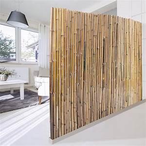 Bambus Sichtschutz Natur 3 Gren Phyllostachys