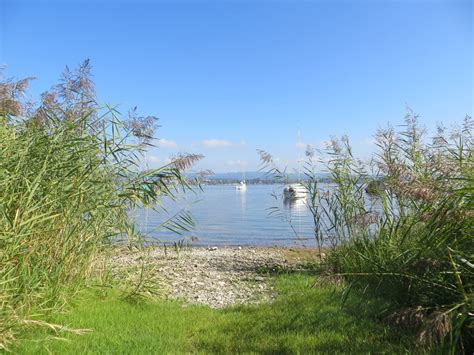 Garten Kaufen Am Bodensee by Ferienhaus Rivalago Direkt Am See Moos Am Bodensee