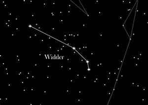 Was Ist Ein Widder : sternzeichen widder starling star registry blog deutsch ~ Eleganceandgraceweddings.com Haus und Dekorationen