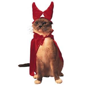 pet costumes for cats cat from hell pet costume the green