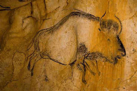 la caverne du pont d arc en images galerie photos