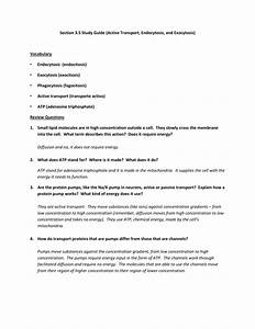 Section 3 5 Study Guide