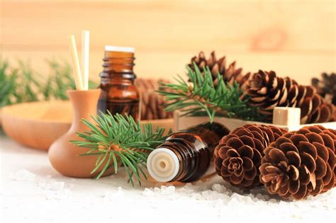 winter use many head much know there been some oil skin need essential into couple oils few very treat last