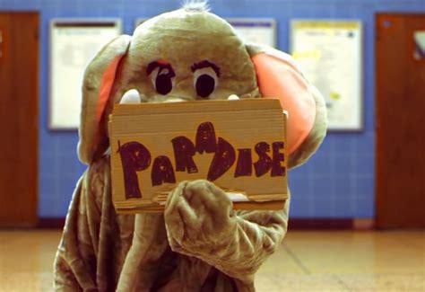 This Could Be Para- Para- Paradise