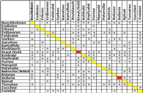 welche pflanzen vertragen sich tabelle hochbeet anlegen g 228 rtnern mit h 252 gelbeet zum autark leben krisenvorsorge