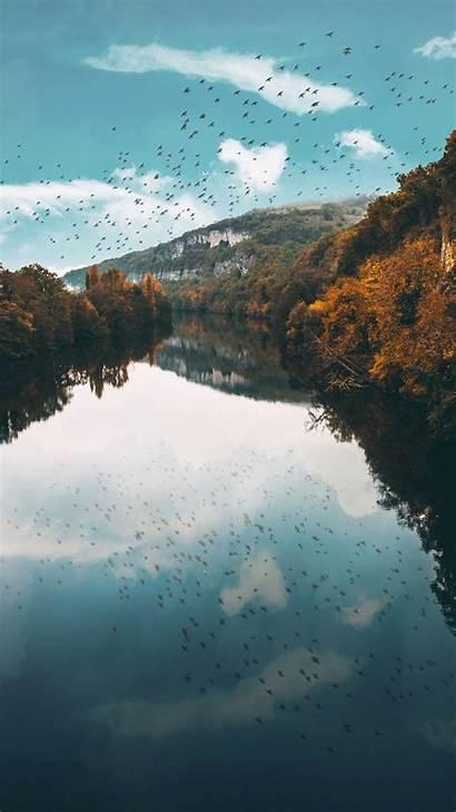 Birds Trees Lake Reflection Flight Autumn S4