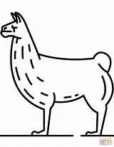 Llama Coloring Pages Realistic Lama Printable Drawing Dot Ausmalen Zum Alpaka Categories Domain Supercoloring sketch template