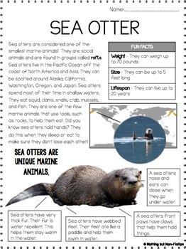 main idea reading passages arctic animals