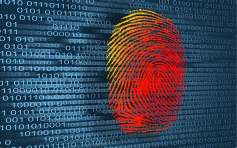 The Role of a Forensics Investigator in Law   EC-Council Blog