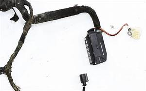 Engine Bay Wiring Harness 98-05 Vw Beetle - 1 9 Tdi